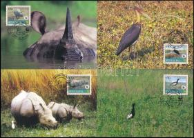 WWF Rare animals set 4 CM, WWF Ritka állatok sor 4 db CM