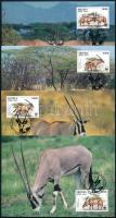 WWF East African oryx set on 4 CM, WWF: Kelet-afrikai nyársas bak 4 db CM-en