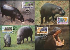 WWF: Törpe víziló sor 4 db CM-en WWF Dwarf hippo set  4 CM