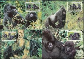 WWF Gorilla set 4 CM WWF: Gorilla sor 4 db CM-en