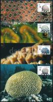 WWF Corals  set on 4 CM WWF: Korallok sor 4 db CM