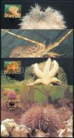 WWF Sea animals set 4 CM WWF: Tengeri állatvilág sor 4 db CM