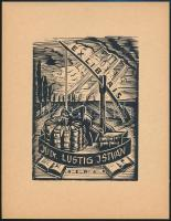 Jaro Beran (1892-1962): Ex Libris, Dr. Lustig István. Fametszet, papír, jelzett a dúcon, 10×7 cm