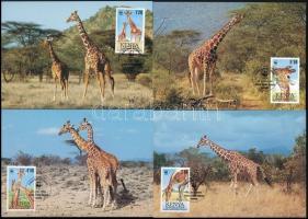 Reticulated giraffe set 4 CM, Recés zsiráf sor 4 CM
