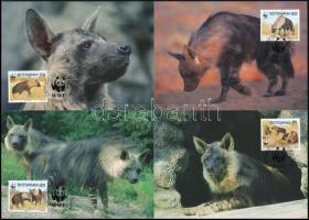 WWF: Hyena set on 4 CM, WWF:  Hiéna sor  4 db CM