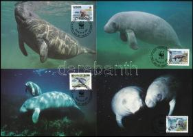 WWF West Indian manatee set 4 CM, WWF: Karibi manátusz sor 4 db CM-en