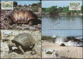 WWF: Turtle set on 4 CM, WWF: Teknős sor 4 db CM-en