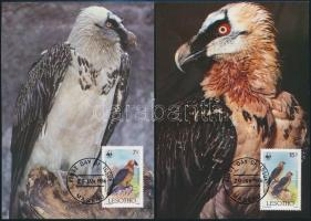 WWF: Saskeselyű sor 4 db CM-en, WWF Eagle set 4 CM