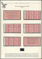 1909 10f bélyegfüzet lapokra szedve, teljes, kiállítási lapon