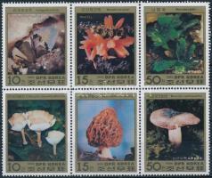Mushrooms set in block of 6, Gombák sor hatostömbben