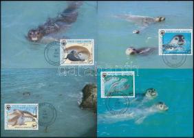 WWF: Seal set on 4 CM, WWF: Fóka sor 4 db CM-en