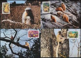 WWF: Golden Langur set 4 CM, WWF: arany langúr sor 4 CM