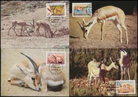 WWF: Gazelle set on 4 CM, WWF: Gazella sor 4 db CM-en