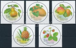 Gyümölcsök sor Fruits set