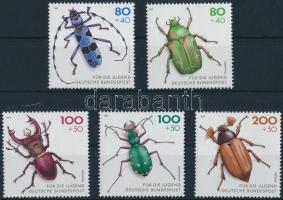 Insect set, Rovar sor