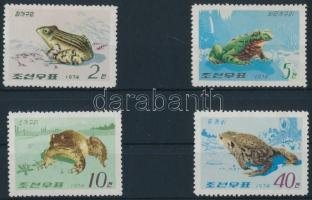 Békák sor Frogs set