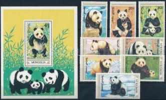 Panda set + block Panda sor + blokk