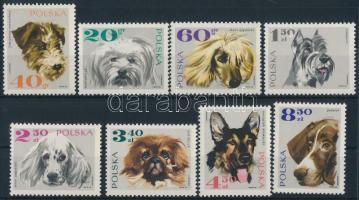 Dog set, Kutyák sor