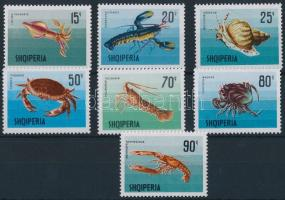 Tengeri állatok sor Sea animals set