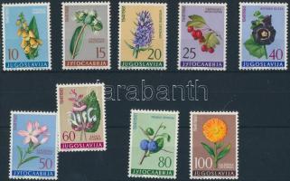 Flora set, Növényvilág sor