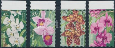 Flower margin set Virágok ívszéli sor