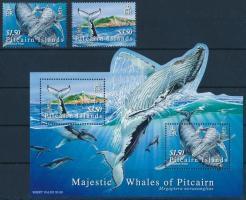 Whales + block, Bálnák + blokk