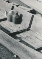 cca 1970 Krisch Béla (?-?) kecskeméti fotóművész 3 db vintage alkotása, pecséttel jelzett, 24x13,5 cm és 26x19,5 cm