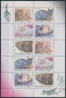 Cats mini sheet, Macskák kisív