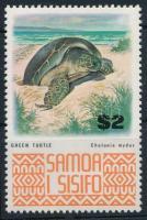 Animals, turtle, Állatok, teknős