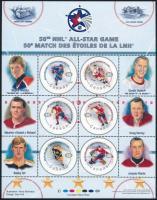 Ice Hockey block Jéghoki blokk