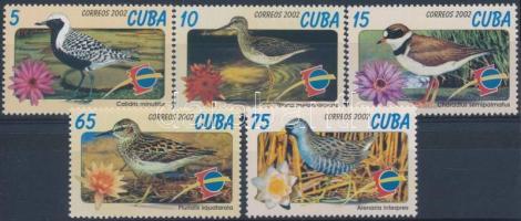 International stamp exhibition ESPANA; Salamanca - Birds set, Nemzetközi bélyegkiállítás ESPANA; Salamanca - Madarak sor