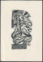 Jelzés nélkül: Ex libris Galambos Ferenc. Fametszet, papír, 9,5x6 cm