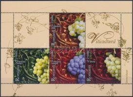Winery, vineyards block Borászat, szőlőfajták blokk