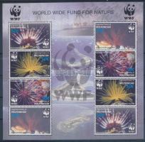 2005 WWF: Korallok 2 és 4 sort tartalmazó kisívek