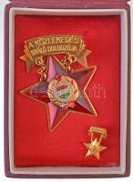 ~1970. A közlekedés kiváló dolgozója zománcozott kitüntetés tokban, minatűrrel T:2