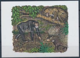 African animals, chimpanzee block, Afrikai állatok, csimpánz blokk