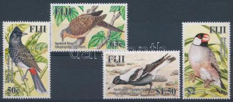 Exotic birds set Egzotikus  madarak sor