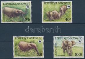 WWF: Forest elephant set WWF: Erdei elefánt sor
