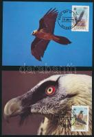 WWF: Bearded vulture set on 4 CM, WWF: Saskeselyű sor 4 db CM-en