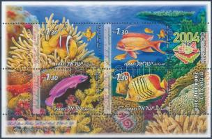 Fish of the Red Sea A Vörös-tenger halai blokk