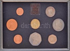 Nagy-Britannia 1983. 1/2p-1Ł (8xklf) forgalmi sor lezárt dísztokban, kihajtogathatós műbőr tokban, ismertetővel T:PP fo. Great Britain 1983. 1/2 Penny - 1 Pound (8xdiff) coin set in sealed case, in foldable faux lether case with information sheet C:PP spotted