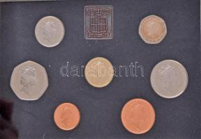 Nagy-Britannia 1985. 1p-1Ł (7xklf) forgalmi sor lezárt dísztokban, kihajtogathatós műbőr tokban, ismertetővel T:PP fo. Great Britain 1985. 1 Penny - 1 Pound (7xdiff) coin set in sealed case, in foldable faux lether case with information sheet C:PP spotted
