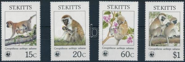 WWF: Monkeys set WWF: Majmok sor