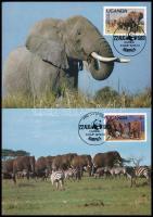 WWF African elephant set on 4 CM WWF: Afrikai elefánt sor  4 CM - en