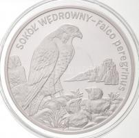 Lengyelország 2008. 20Zl Ag Vándorsólyom T:PP Poland 2008. 20 Zlotych Ag Peregrine Falcon C:PP Krause Y#637