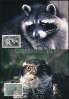 Wild animals set 4 CM, Vadon élő állatok sor 4 db CM-en
