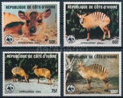 WWF: Zebra-bóbitásantilop sor, WWF Zebra duiker set