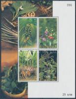 Herbs block, Fűszernövények blokk