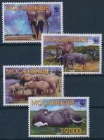 WWF: African elephant set, WWF: Afrikai elefánt sor