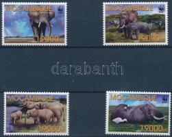 WWF African elephant set, WWF: Afrikai elefánt sor